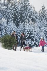 Österreich, Land Salzburg, Flachau, Blick auf Familienangehörige Weihnachtsbaum und Schlitten im Schnee