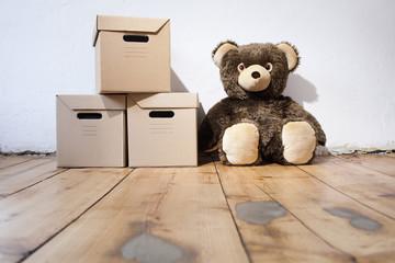 Teddy neben Kartons