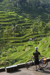 Indonesien, Bali, Tegalalang, Mann steht mit Fahrrad, Blick auf Felder