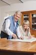 Deutschland, Kratzeburg, älteres Paar liest Karte
