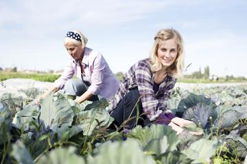 Deutschland, Sachsen, Frauen arbeiten auf dem Bauernhof
