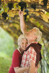 Italien, Südtirol, Älteres Paar im Weinberg