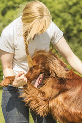 Dog owner cuddling