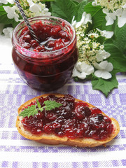 Cranberry jam or sauce and toast