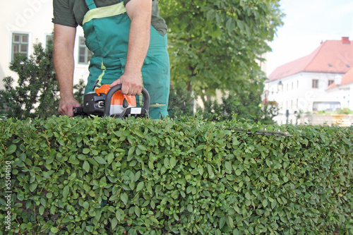 Man trimming hedge_2