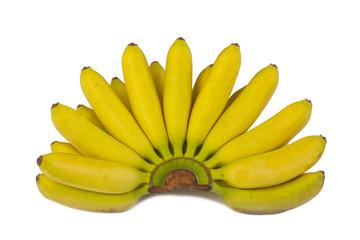 Bananas right off the tree.