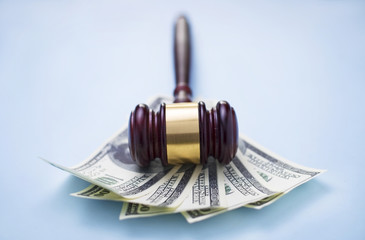 gavel and dollars on a blue background