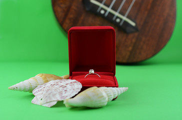 wedding rings in red case