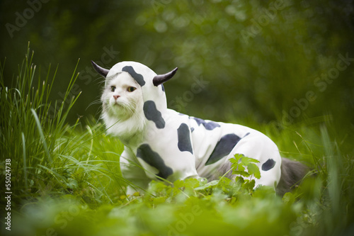 Deurstickers Schapen cat dressed as a cow