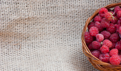 rubus idaeus in a basket isolated on background