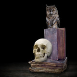 skull and owl on old books