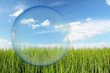 saubere Umwelt - 55027799