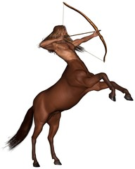 Sagittarius the archer - rearing