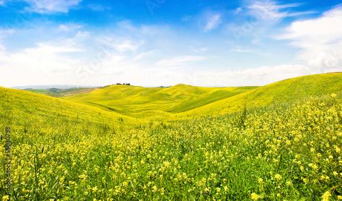 Fototapeten,italien,toskana,landschaft,frühling