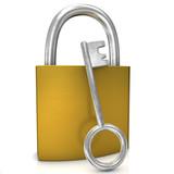 D-Lock With Key
