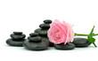 Róża z kamieniami do spa na białym tle