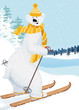 Cute shaggy polar bear skiing
