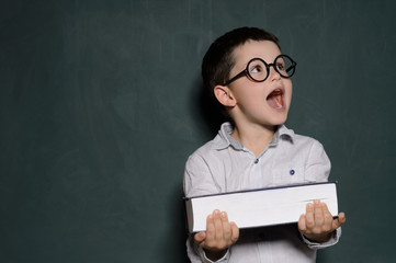 Happy schoolboy. Cheerful little schoolboy in glasses holding a