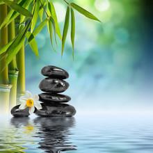 Pierres et de bambou sur l'eau avec le narcisse fleur