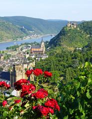 Panorama Ausblick am Rhein