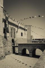 Entrada al castillo de marcilla