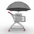 Shopping cart being protected by an umbrella