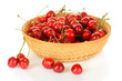 Cherry berries in wicker basket isolated on white