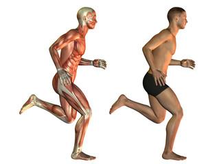 Männlicher Körper beim Laufen