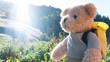 Leinwandbild Motiv teddy bear hiking
