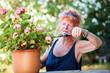 Rothaarige Rentnerin bei der Gartenarbeit