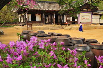Korean traditional village house