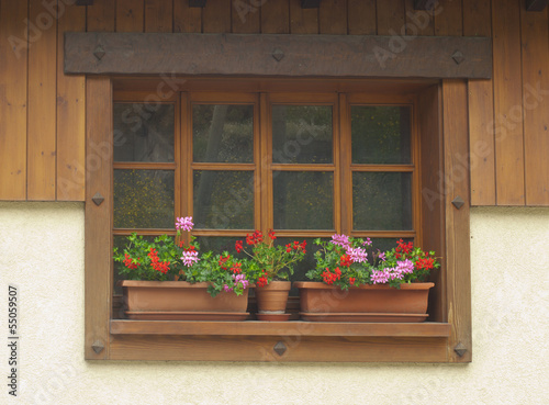 Window with flower boxex in France