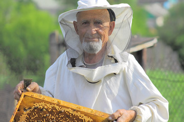beekeeper, honey gathering