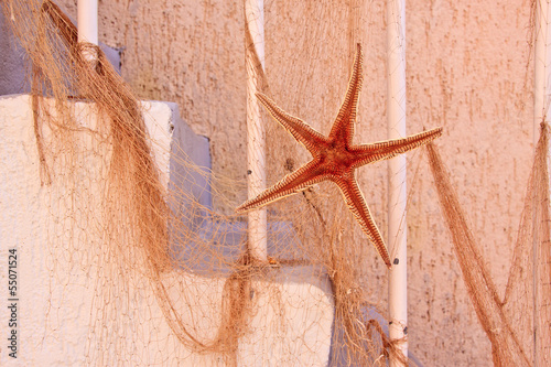 Decorative souvenir sea star