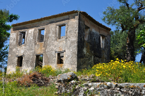 abandoned house and spring landscape