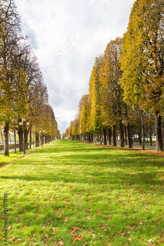 Autumn alley in Paris near Seine river