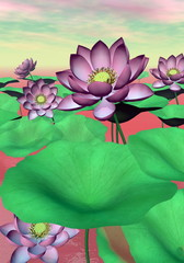 Pink waterlilies and lotus flowers - 3D render