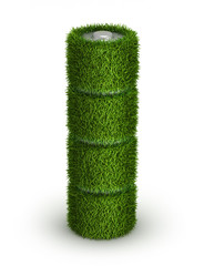AA battery from grass with cells