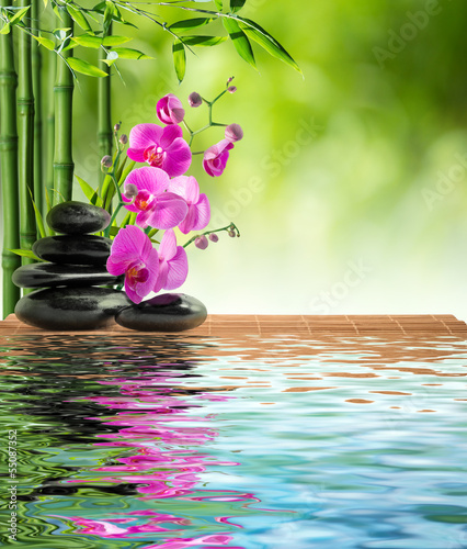 pink orchid black stone and bamboo on water - 55087352
