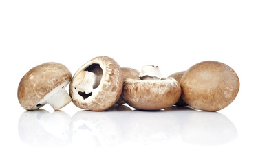 fresh mushroom champignon isolated on white background