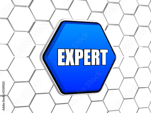 expert in blue hexagon