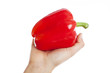 Hand holding a red pepper