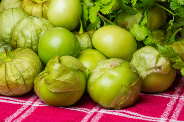 Fresh picked Tomatillos on display