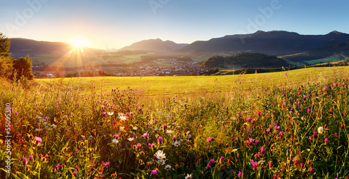 Sunset on flower field - Slovakia Tatra © TTstudio