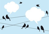 birds in the sky, vector background