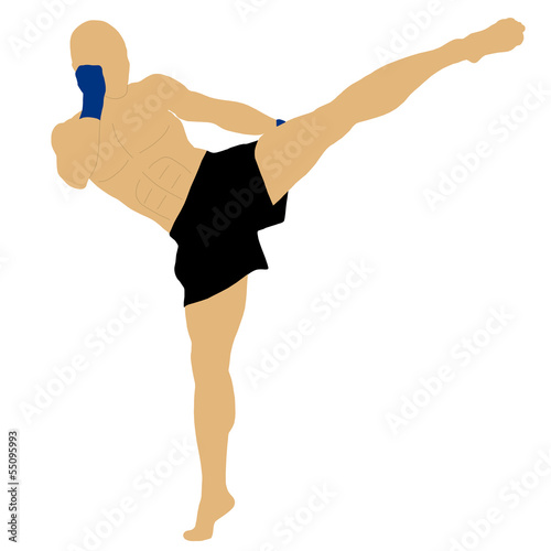 fighter doing a high kick