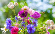 Colorful summer wild flowers bouquet in the sunshine
