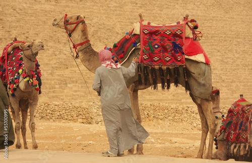 Fototapeten,reisen,landschaftlich,kairo,norden