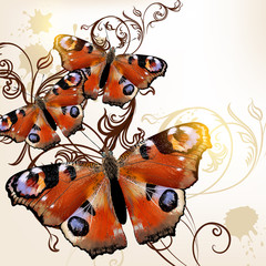 Beautiful vector  background with butterflies