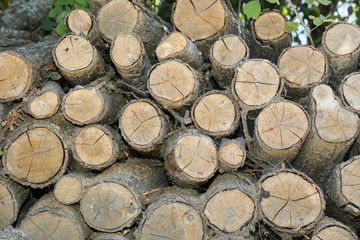 Yakacak Odun